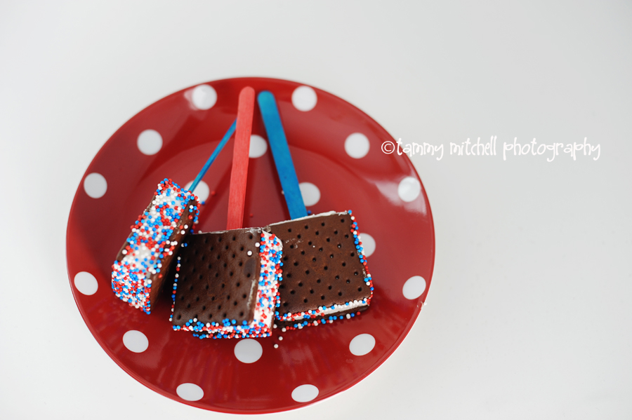 patriotic party ideas Pink Peppermint Design